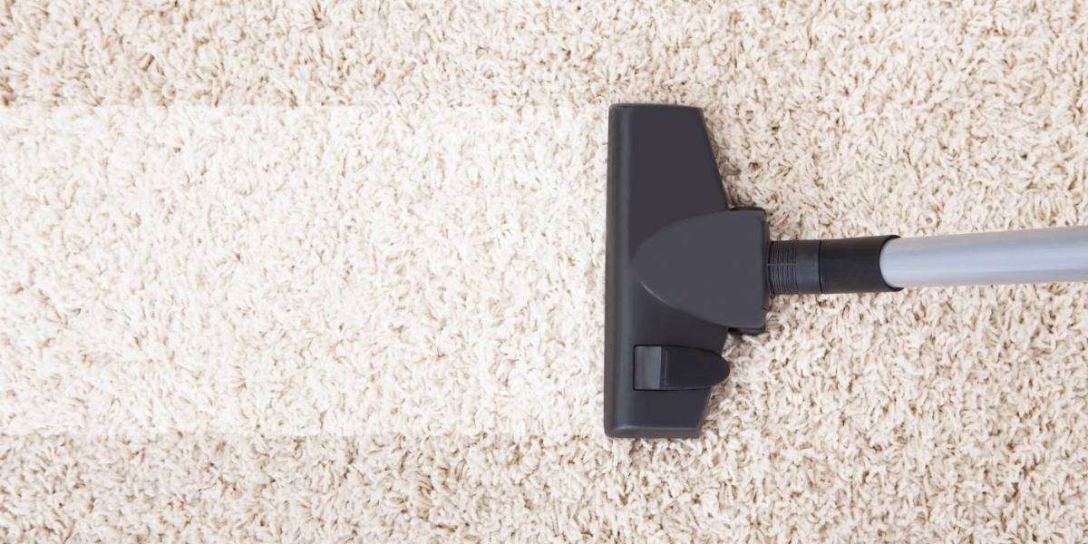 The Best Barrel Vacuum Cleaner NZ and The Features You Need to Clean Your Unique Carpet