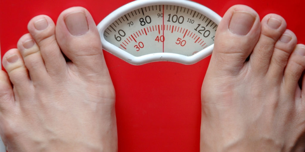 body fat scale features