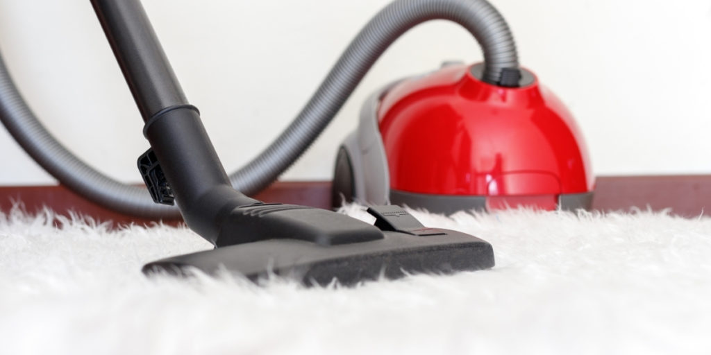 carpet shampooers features