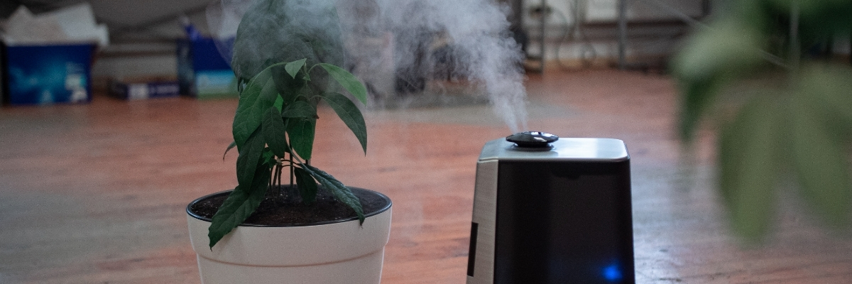 The Best Air Purifiers NZ and How They Can Improve Breathing Quality in Your Home